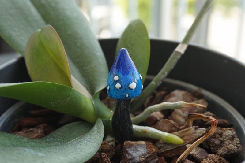 champignon fée décoration jardin polymère fimo