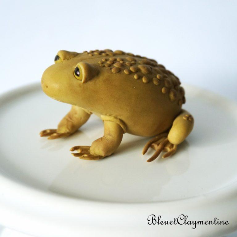 grenouille polymère fimo